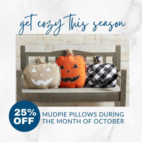 Christina - MudPie Pillow Sale
